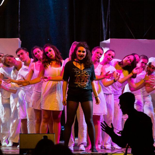 Floodlight Musical e.V.